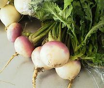 渡辺さんちの野菜たち