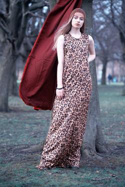 leopard06