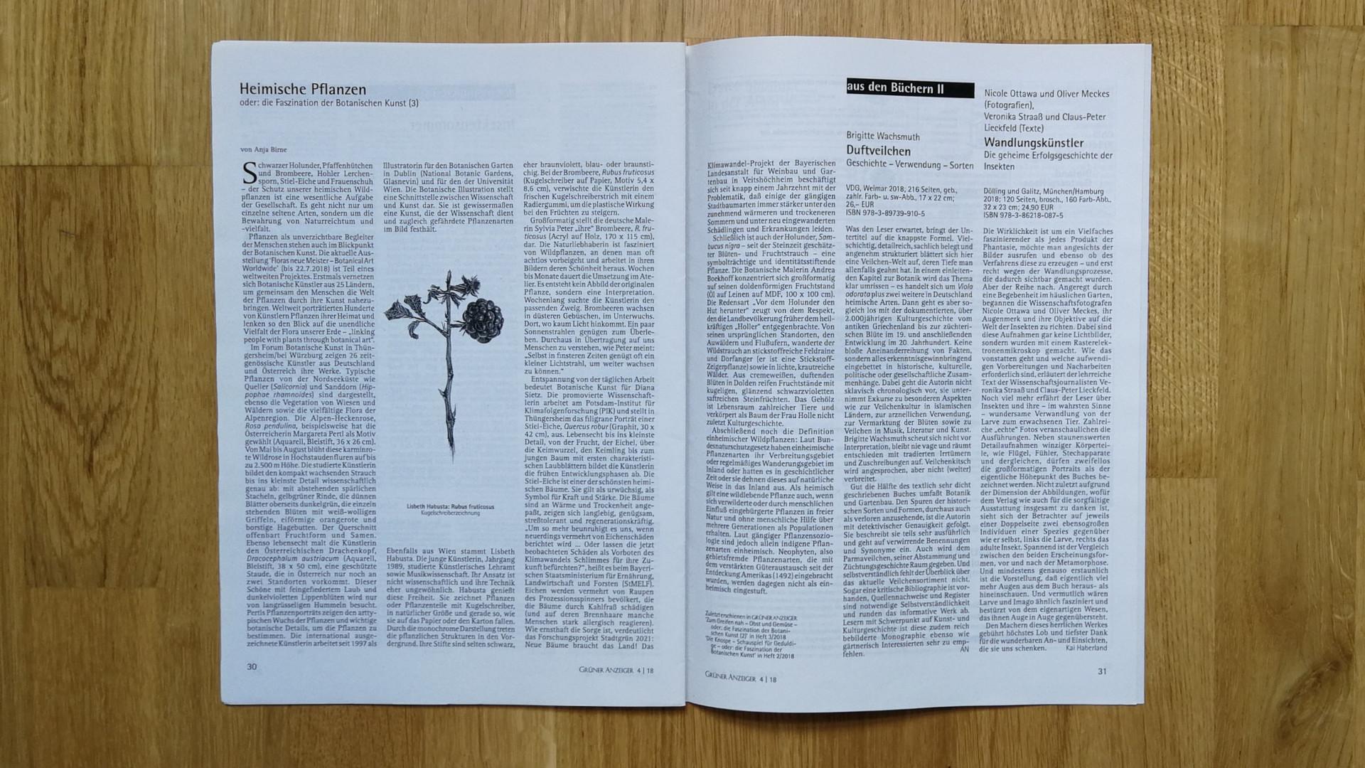 Grüner Anzeiger 07/08 2018, Artikel