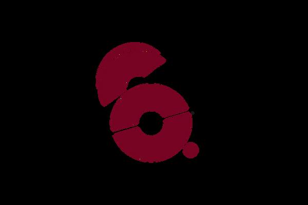 6z_logo HP_ klein_2020.png
