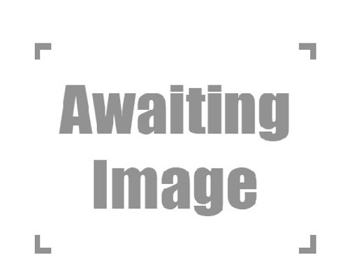 2018 Caramel Jag 100% het Axanthic Male
