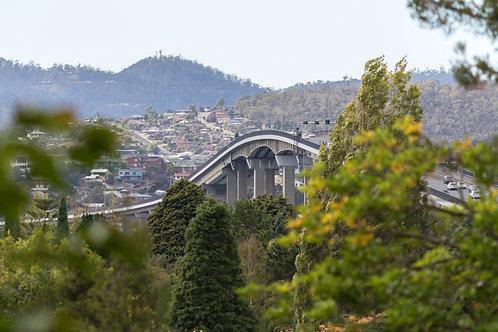 Tasman Bridge From the Botanical Gardens