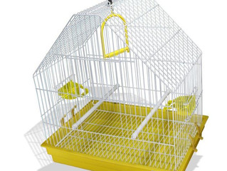 Escolhendo uma gaiola para sua ave.