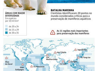 Cientistas mapeiam regiões críticas para mamíferos aquáticos