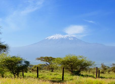 Kilimanjaro Expedition: Meet the Team