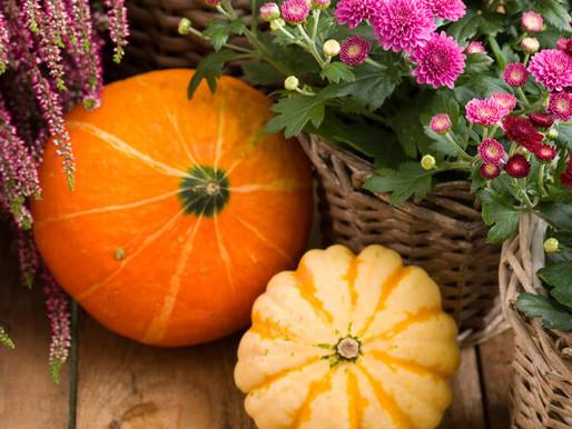 October Home Maintenance Checklist