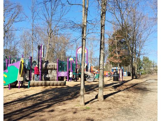 Community Spot Light: Dinosaur Park
