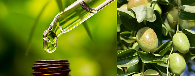 Why we all need a little Jojoba in our lives...