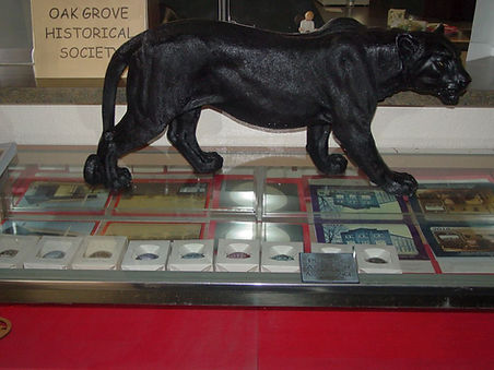 large_panther_on_case_with_ornaments_and