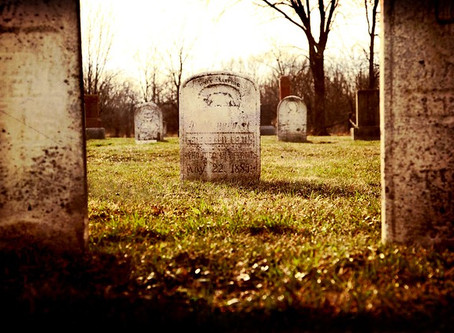 Sex in a Cemetery, and Other Poor Choices // Shannon Frost Greenstein
