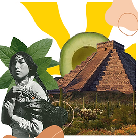 avocadomint.mexico.png