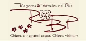 logo rbp.png