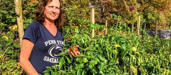 Staff Sustainability Award Awarded to Melissa Forsha
