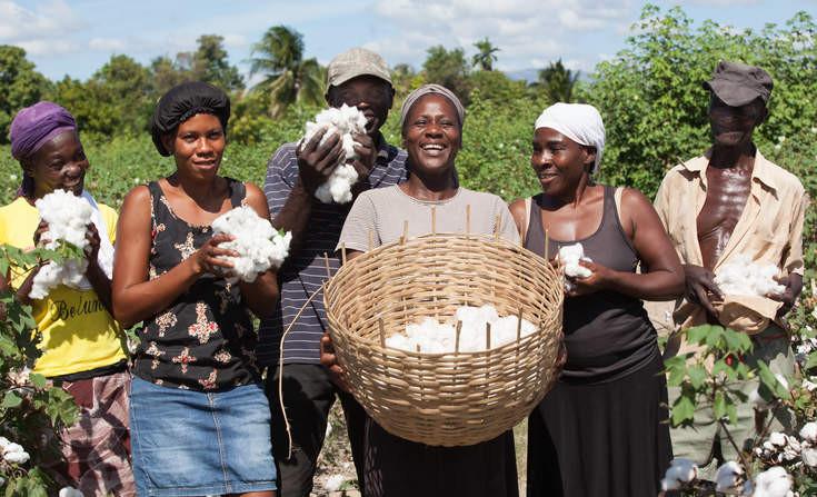 GreenBiz smallholder farmers
