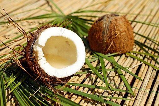 Přírodní kokosové krmivo