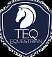 TEQ Equestrianpatchblue.png