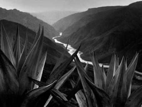 Fotógrafos españoles y del mundo se alían contra el Covid con una venta benéfica de sus obras