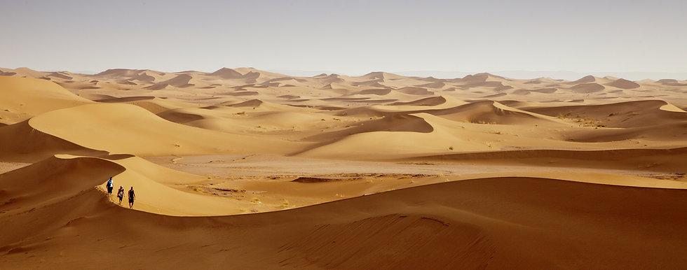 desierto viaje fotografico 2021.jpg