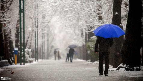 Blue Umbrella ( Explored ).jpg