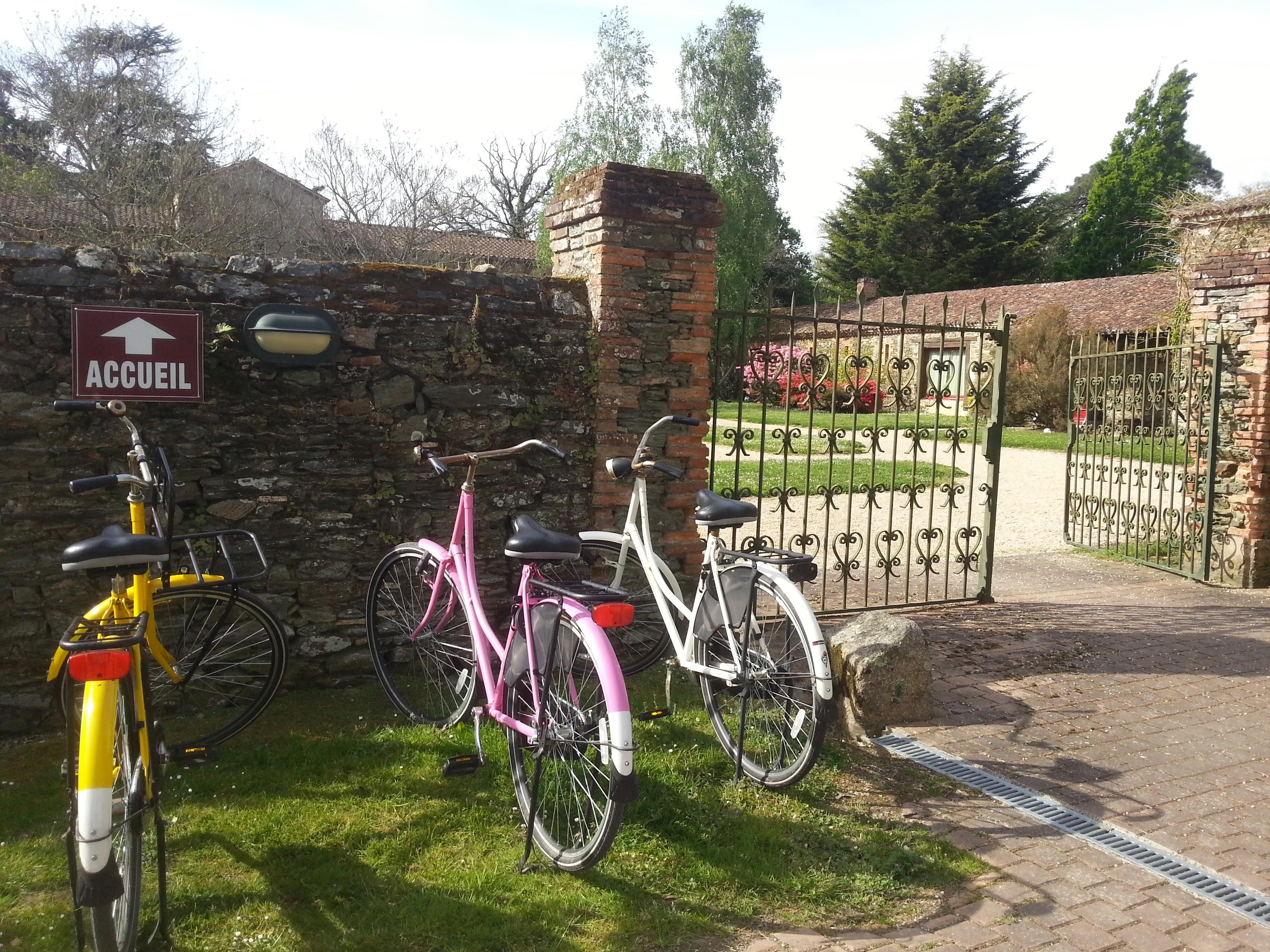 Vélos adultes gratuits