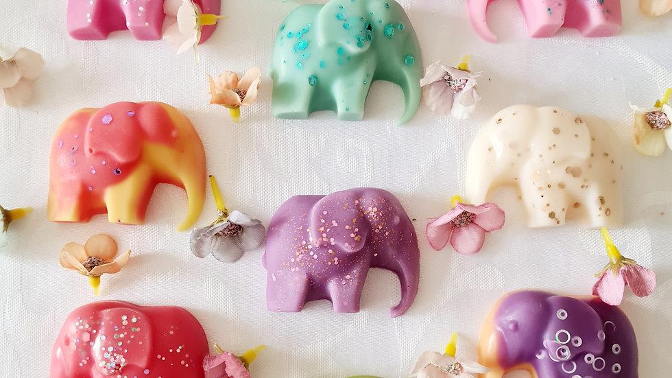Sample box (Elephant)