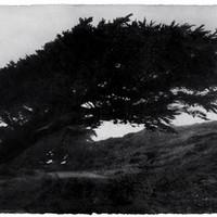 Wind 07-73