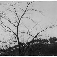 Wind 07-68