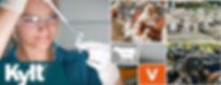 Screenshot_2020-02-06 Kylt - Diagnostic