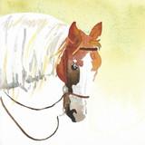 "_Ready_ _Watercolor_6_ x 6""_Daniel Smith"
