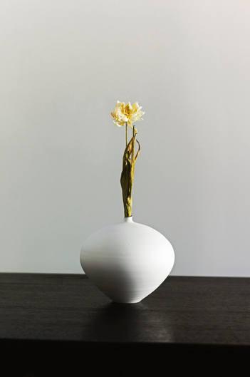 うつわ 祥見 「花とうつわ」展 utsuwa shoken,for exhibiton  'Hana to Utsuwa' 2019
