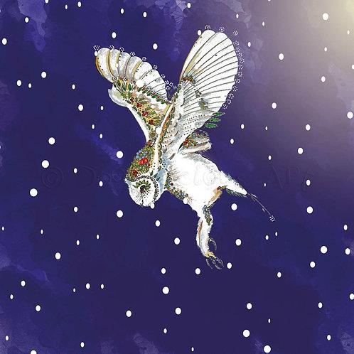 6 x Barn Owl in Snow [211]