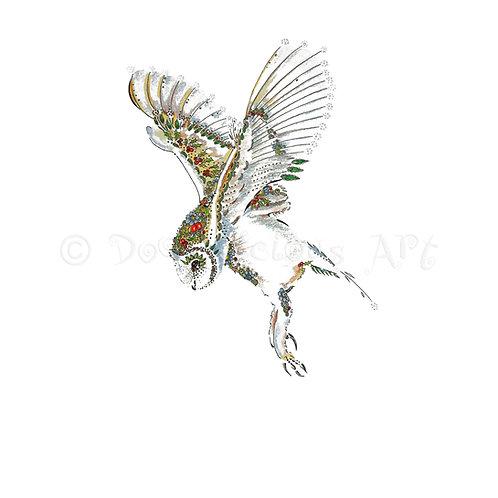 6 x Rosehip Barn Owl [353]