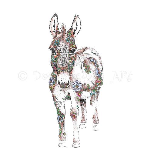 6 x Little Donkey [480]