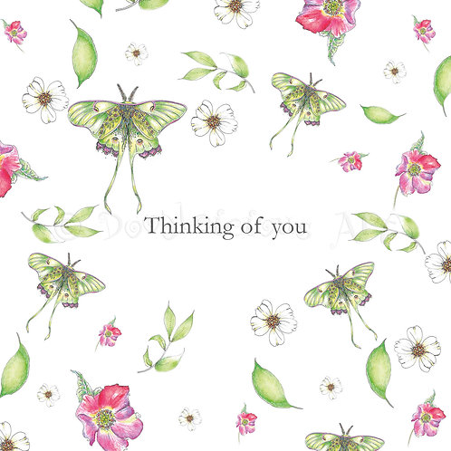 6 x Wild Flower Thinking of you [421]
