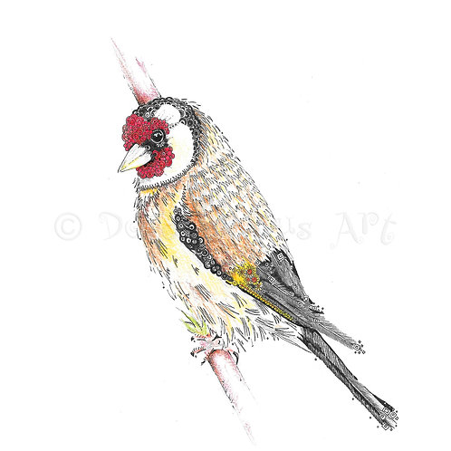 6 x Goldfinch [371]