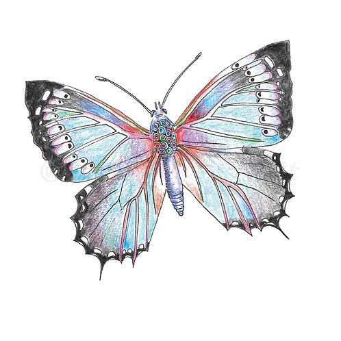 Blue Butterfly [430]