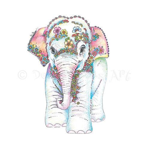 6 x Baby Elephant [429]