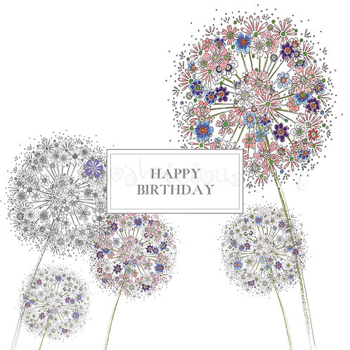 6 x Happy Birthday Alliums [134]