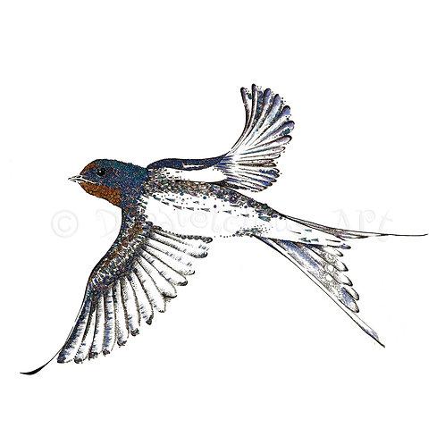 6 x Swallow [020]