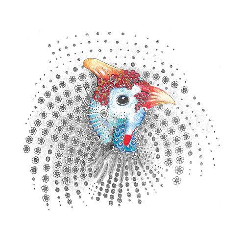 Guinea Fowl [369]