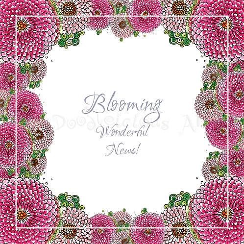 6 x English Daisies Blooming Wonderful [274]