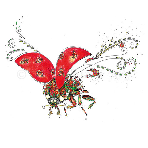 Ladybird [053]