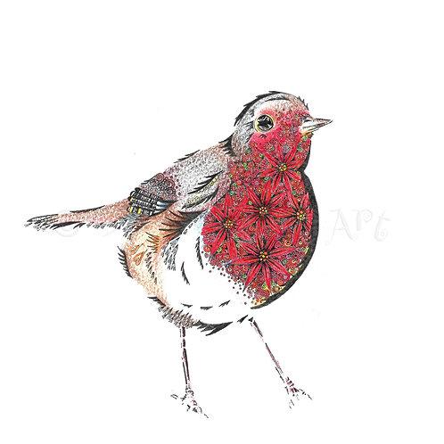 Poinsettia Robin [528]