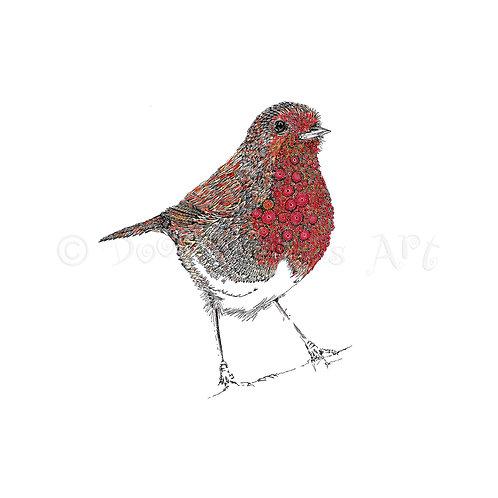 Robin [015]