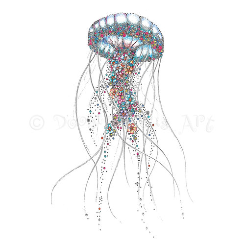 Jellyfish [360]
