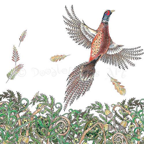 Woodland Pheasant flying [549]