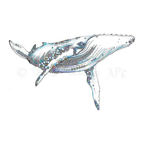 Blue Whale [359]