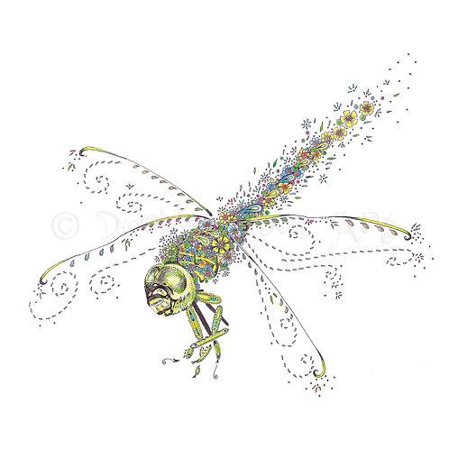 Green Dragonfly [054]