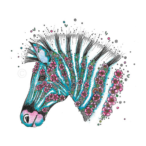 Zebra [512]