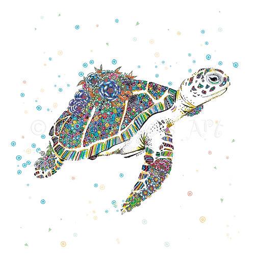 6 x Tropical Turtle [035]